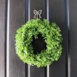 $12 boxwood knockoff wreath