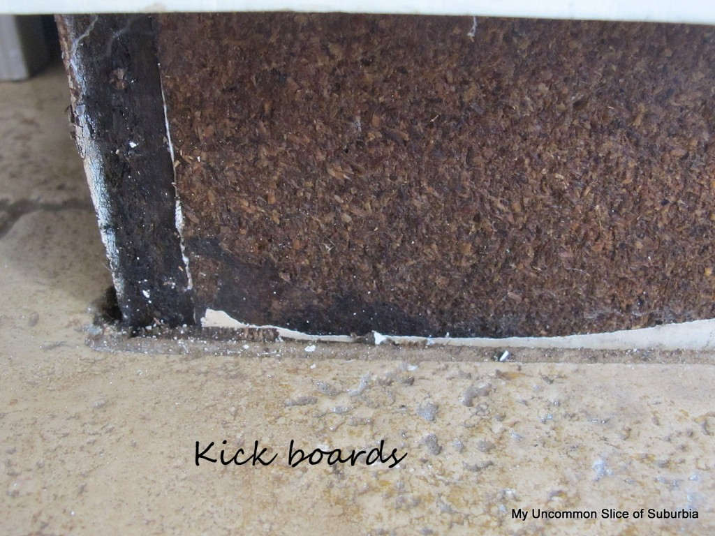 Black Mold In Kitchen Mold Everywhere