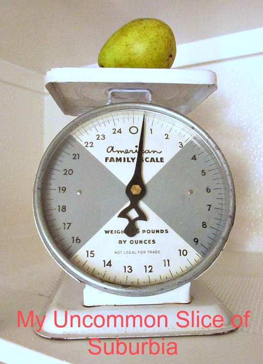 pantry scale