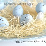 DIY Speckled Robin's Eggs