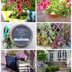 Outdoor Extravaganza Plants & Flowers Link Party