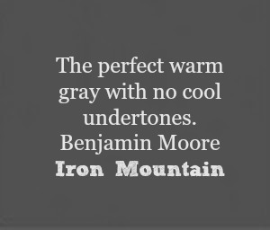 Benjamin Moore Iron Mountain