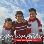 2014 Christmas Cards From Minted