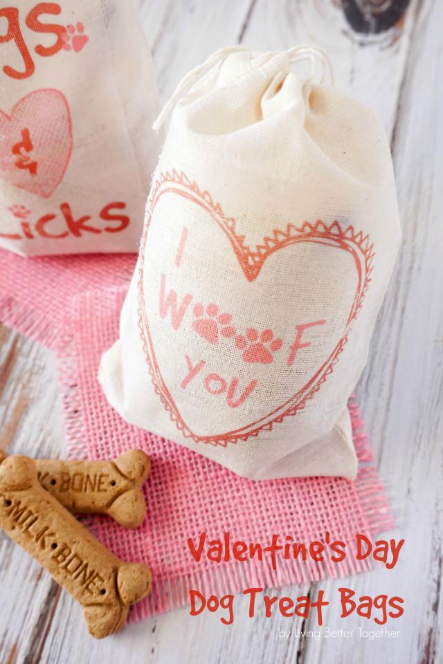 diy-valentine-dog-treat-bags6