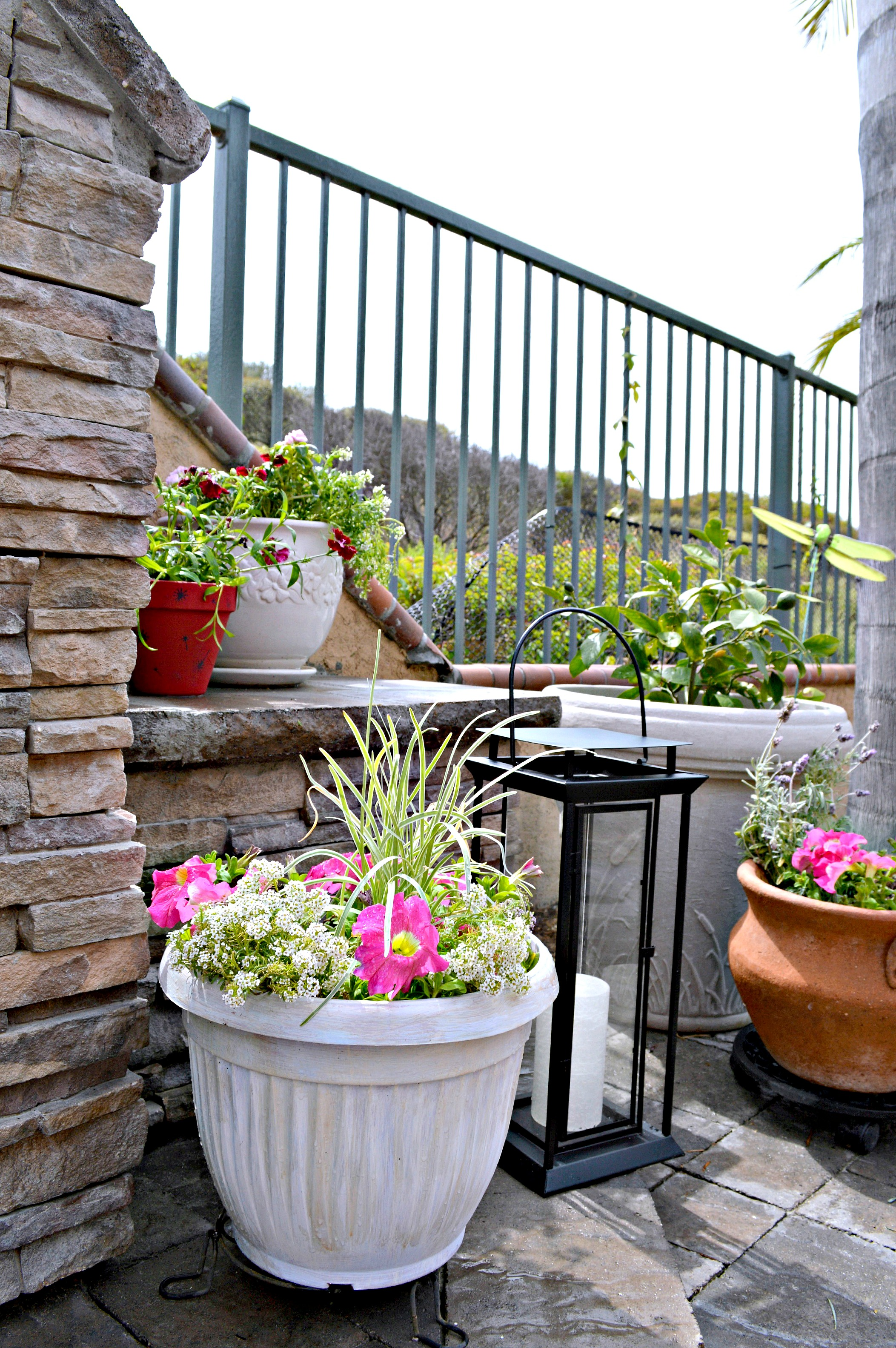 Sprucing Up The Yard With Upcycled Dollar Store Planters