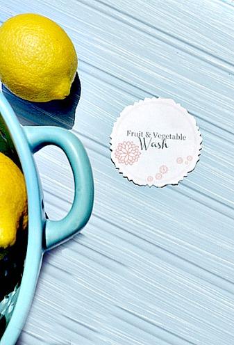 Fruit and vegetable wash free printable
