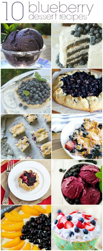 10-Blueberry-Dessert-Recipes