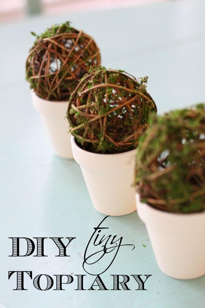 topiary1-682x1024