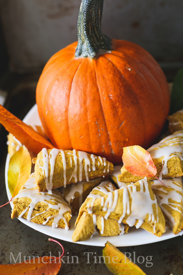 Mini-Pumpkin-Scones-Recipe-www.munchkintime.com-35