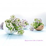 Flowering Egg Shells