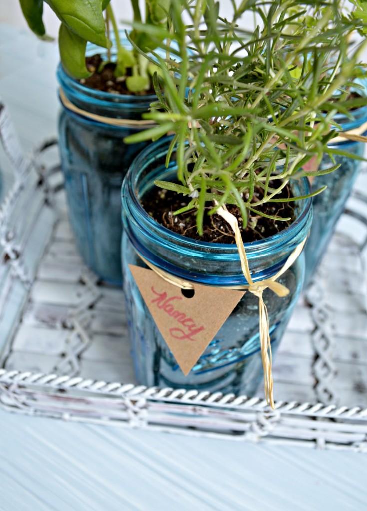Herbs in a mason jar