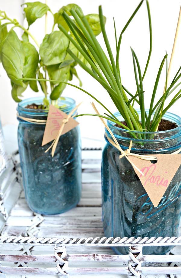 Mason Jar Herb Garden My Uncommon Slice Of Suburbia