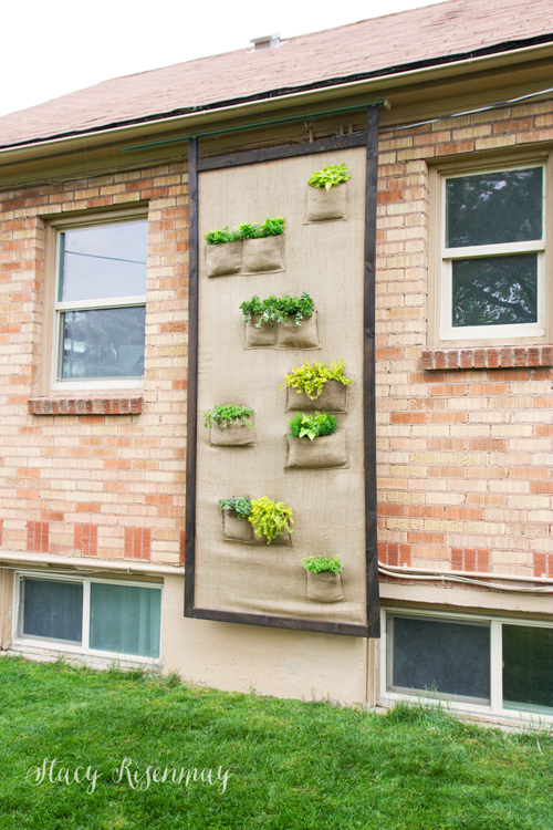 plant-wall-sliding-screen