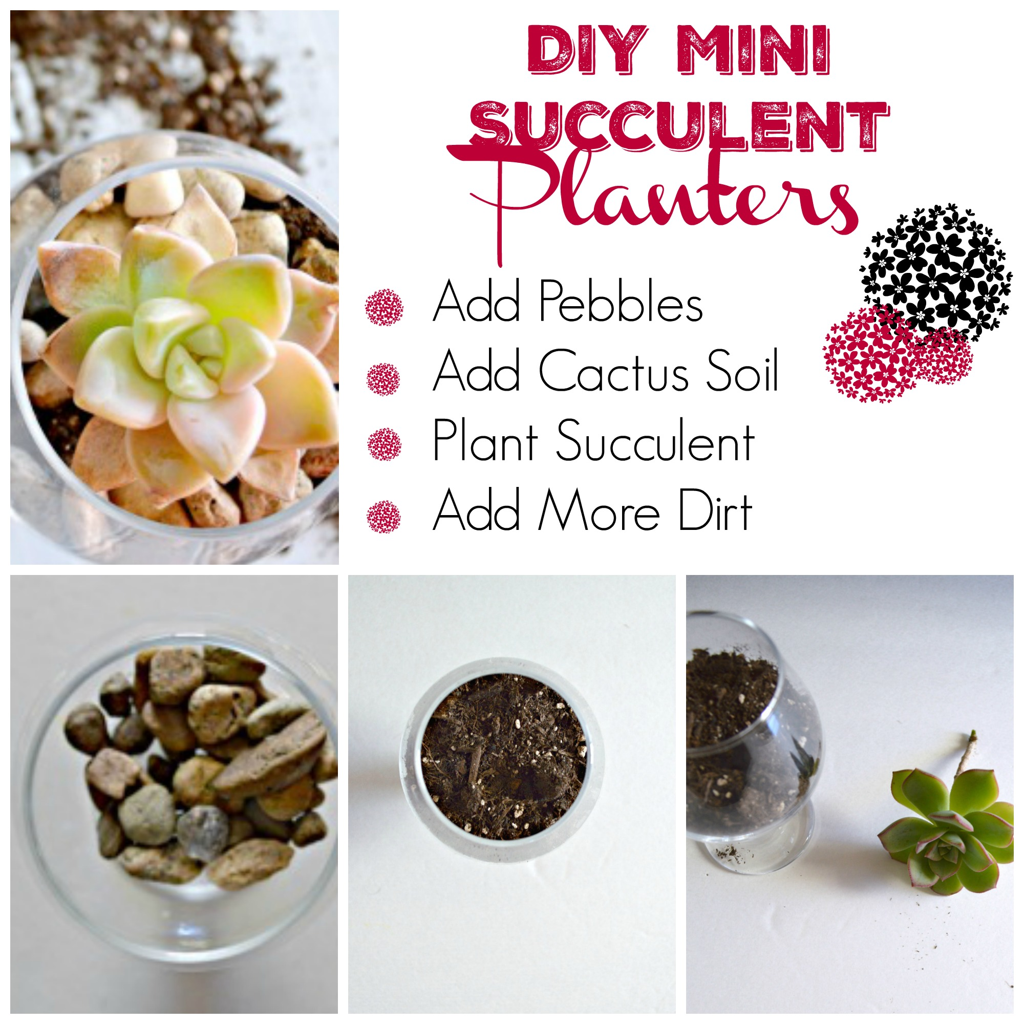 DIY Succulent Planters using a glass