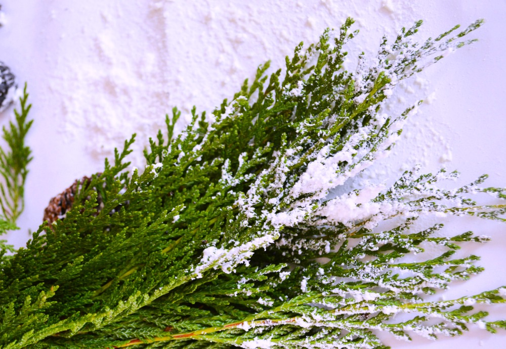 easy-tutorial-on-how-to-make-snow-covered-garland-and-pinecones