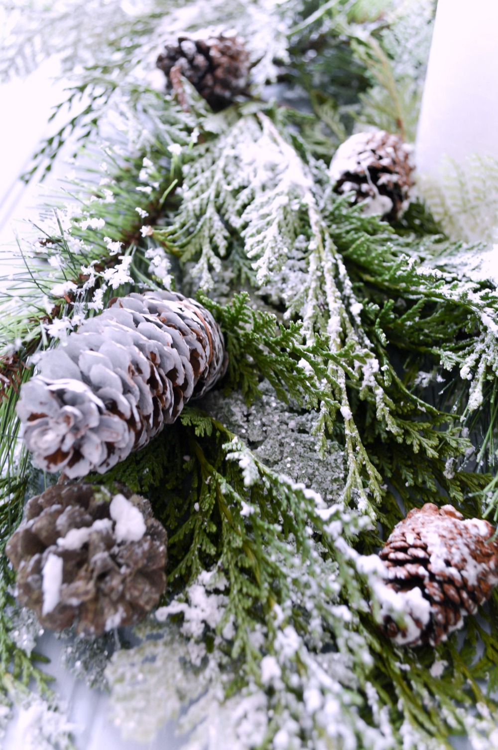 how-to-make-snowy-pinecones-so-easy