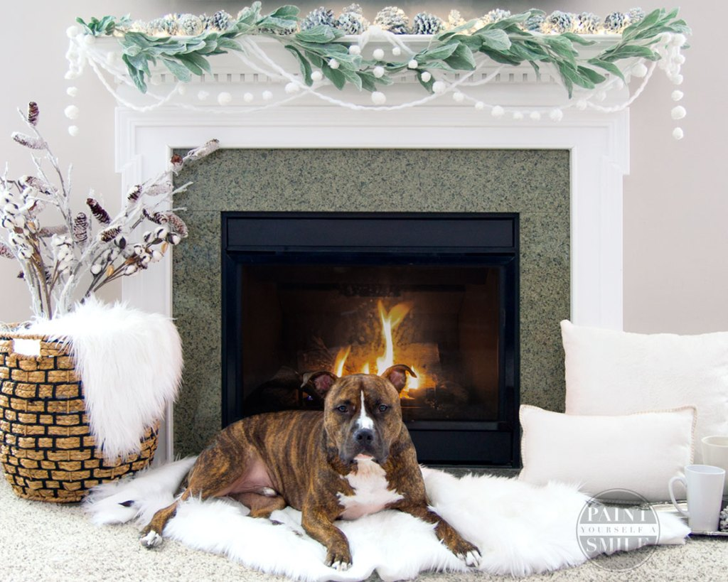 fireplace-winter-garland-and-family-pet