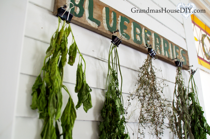 herb-drying-rack-binder-clips