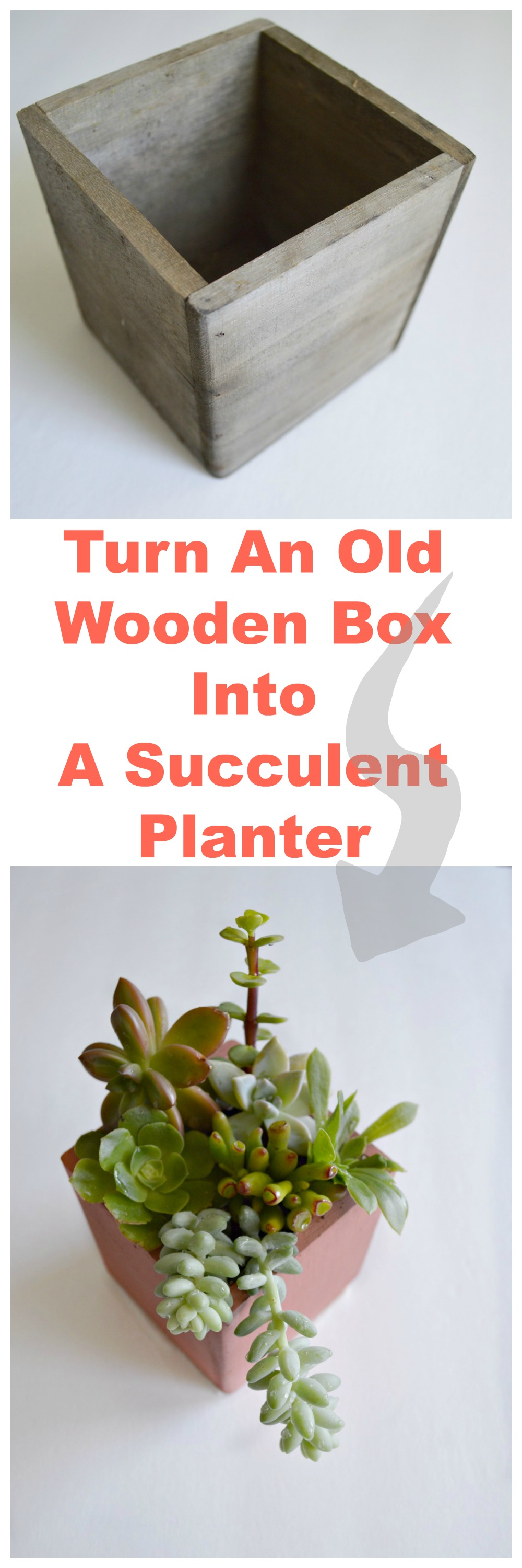 DIY Succulent Planter out of a old wooden box, great idea!