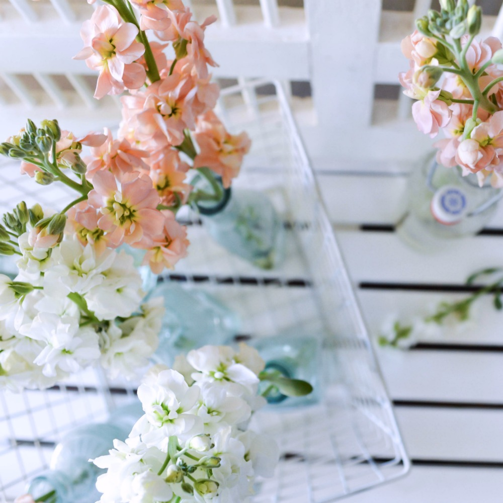Take freshly cut stems and insert them into glass bottles for a gorgeous display!