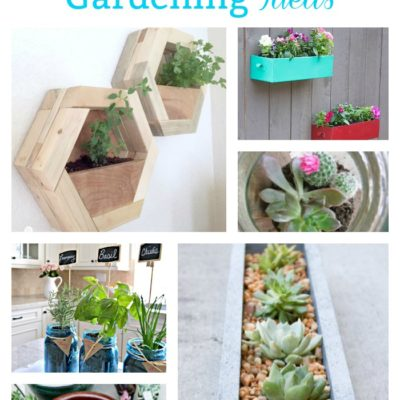 Enjoy nonstop color all season long with these container gardening ideas and plant suggestions