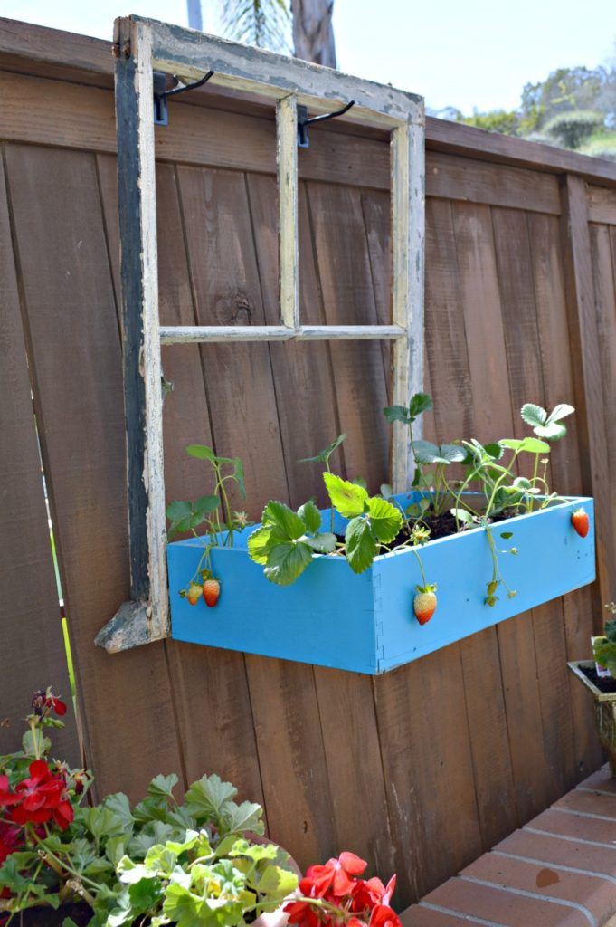 Repurpose an old window and drawer into a flower box