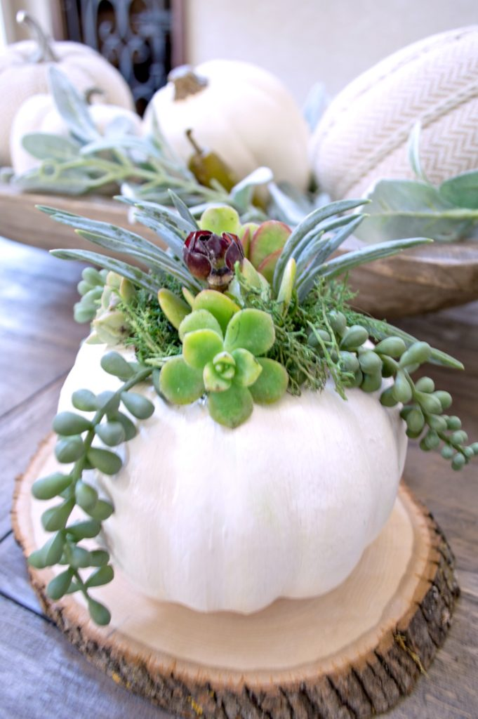 Learn how to make these beautiful succulent pumpkins out of dollar store foam pumpkins