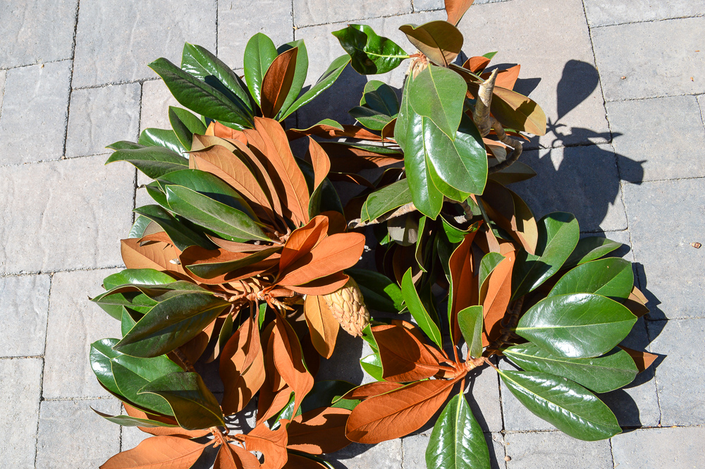 How to make a beautiful farmhouse magnolia wreath for CHEAP!