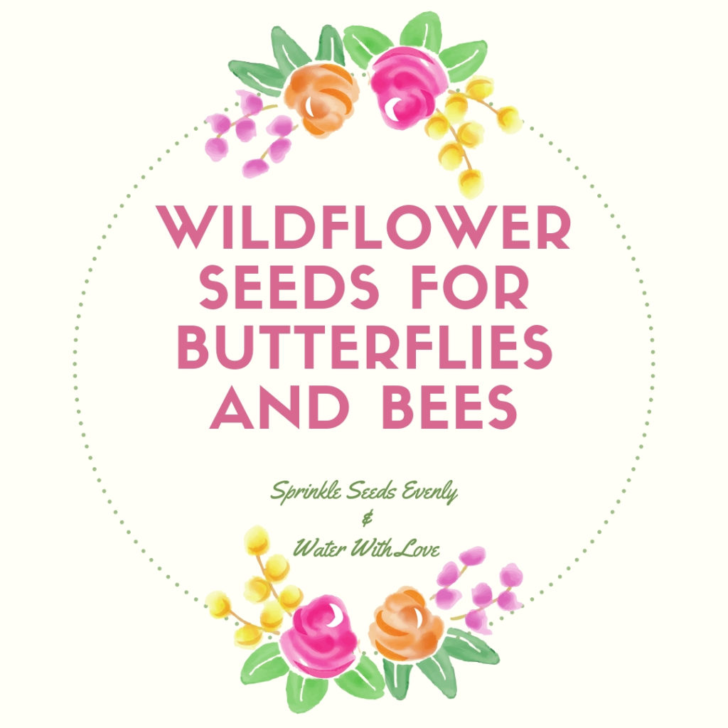 Free Downloadable Printable for seed packets